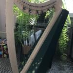 Jasmine's Harp