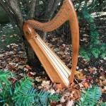 New Harp Videos!
